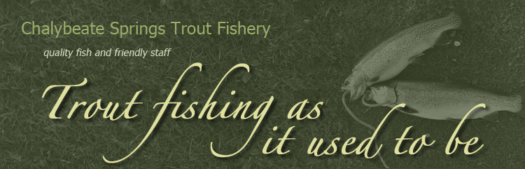 Chalybeate Springs Trout Fishery - Quality fish and friendly Staff | Trout fishing as it use to be